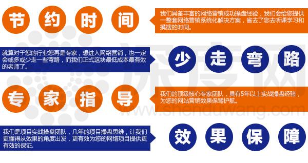 提供网站SEO服务,为您的营销网站推广保证其效果