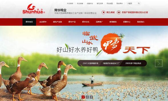 湖南临武舜华鸭业营销型网站建设案例