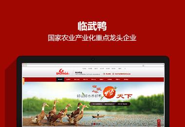 湖南临武舜华鸭业营销品牌网站案例