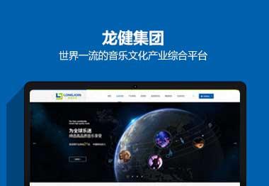 龙健集团网站建设案例
